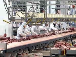 Обвальщик мяса в Германии