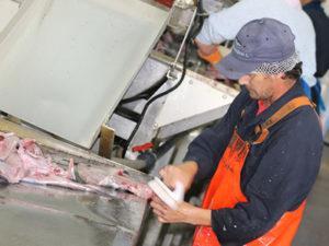 Разнорабочий на рыбное предприятие в Польше