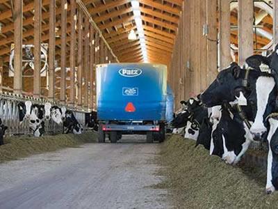 Вакансія для працівника на фермі в Чехії