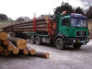 Работа для водителя лесовоза с манипулятором