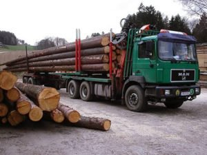 Робота для водія лісовоза з маніпулятором