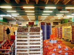 Работа для помощника на овощном складе