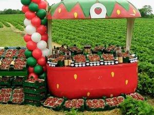 Робота для студентів з продажу полуниці