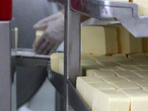 упаковка сыра на фабрике в Германии