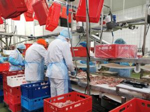 Упаковка и разделка мясной продукции